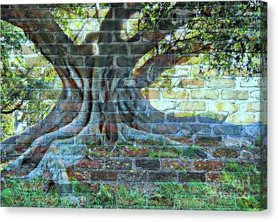 Tree On A Wall Canvas Print