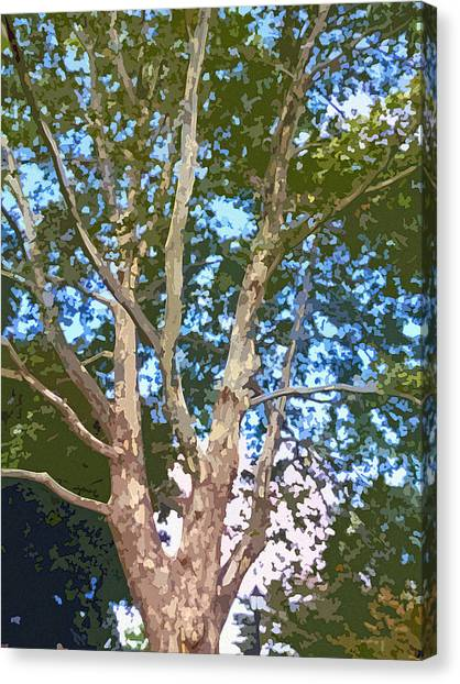 Blue Camo Canvas Print - Tree On The Common by Jean Hall