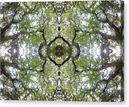 Tree Photo Fractal Canvas Print