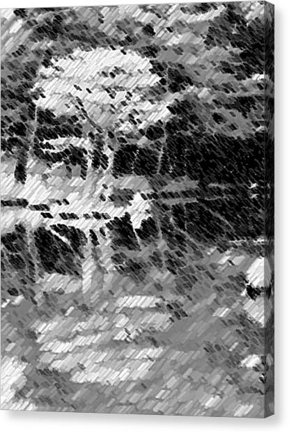 Tree Reflecting In Pond Canvas Print by Curtis Schauer