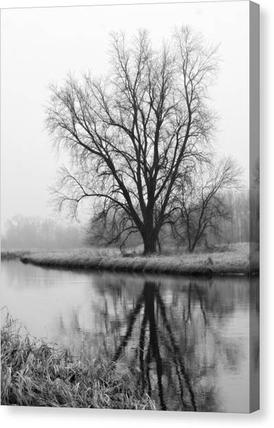 Tree Reflection In The Fox River On A Foggy Day Canvas Print