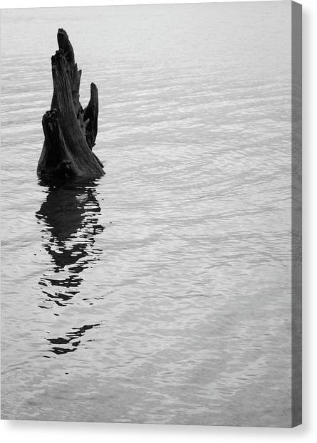 Tree Reflections, Rest In The Water Canvas Print