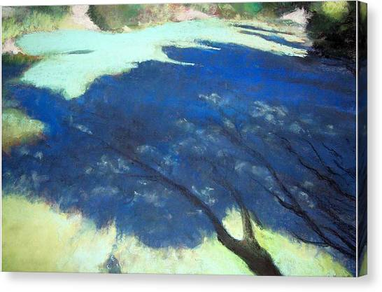 Tree Shadows Canvas Print by Anita Stoll