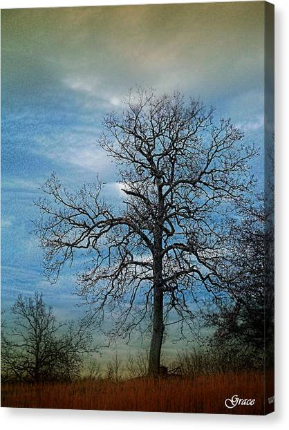 Tree Spirits Canvas Print