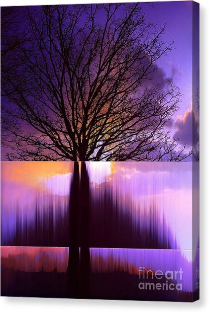 Disturbing The Rule Of Thirds Canvas Print