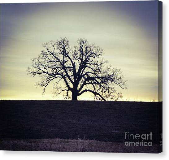 Tree5 Canvas Print