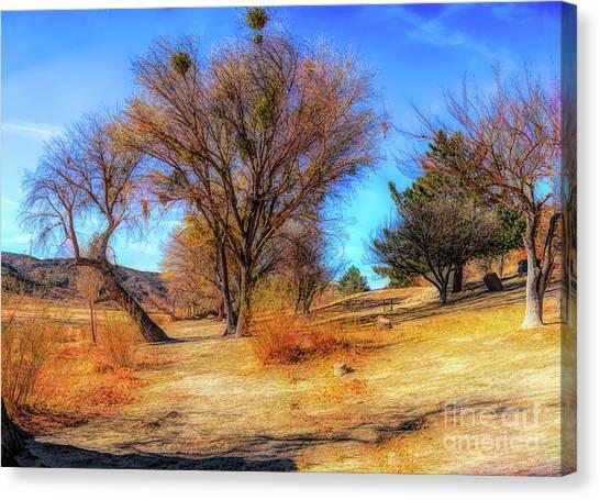 Trees Along Elizabeth Lake Canvas Print