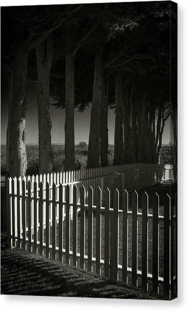 Trees And Pickets Canvas Print