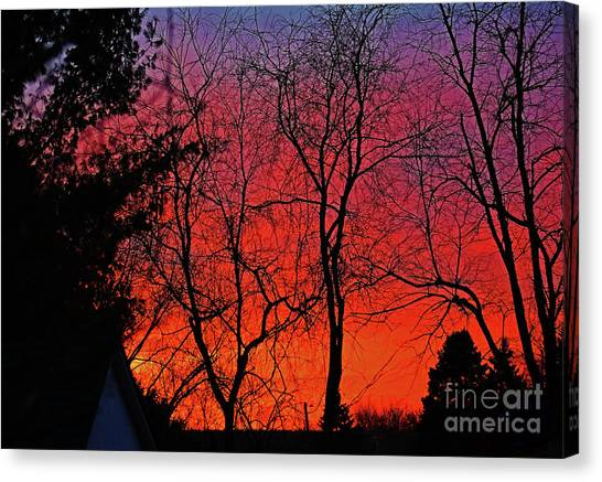 Canvas Print featuring the photograph Trees And Sunrise by Patti Whitten