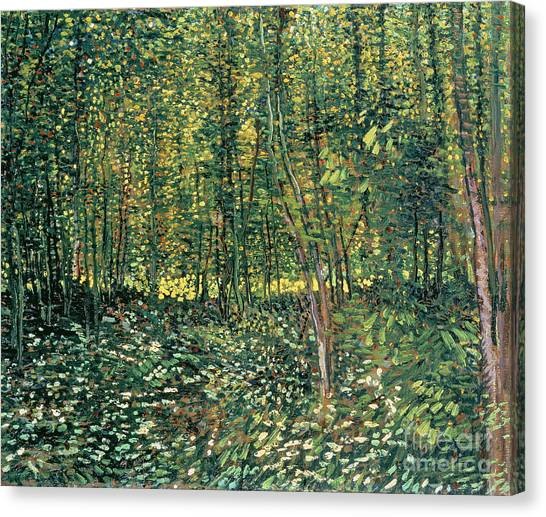 Crt Canvas Print - Trees And Undergrowth by Vincent Van Gogh
