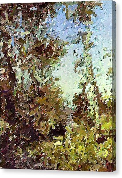 Trees In The Back Yard Canvas Print by Don Phillips