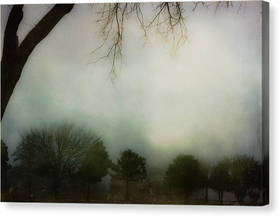 Trees In The Mist Canvas Print