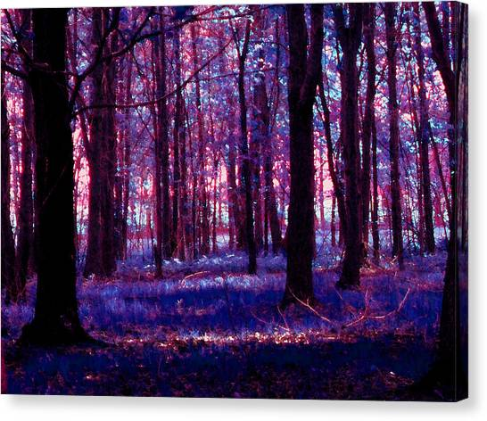 Canvas Print featuring the photograph Trees In The Woods In Pink And Blue by Michelle Audas