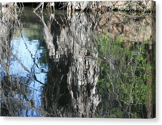 Trees Mirrored In A Lake Canvas Print by Carol Hakobian
