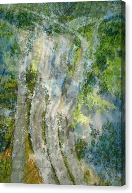 Trees Over Highway Canvas Print