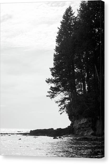 Trees Over The Ocean Canvas Print