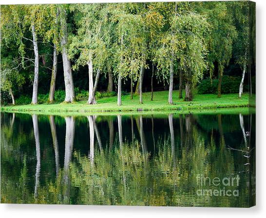 Trees Reflected In Water Canvas Print