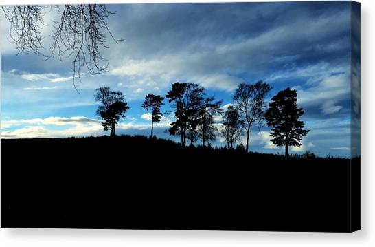 Trees Canvas Print