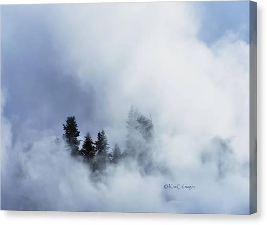 Trees Through Firehole River Mist Canvas Print
