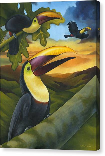 Costa Rican Canvas Print - Treetop Toucans by Nathan Miller