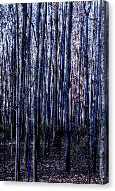 Treez Blue Canvas Print
