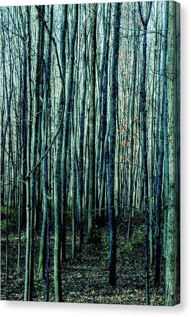 Treez Cyan Canvas Print
