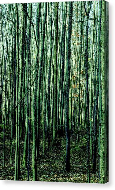 Treez Green Canvas Print