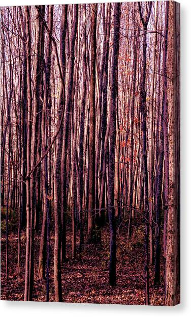 Treez Red Canvas Print