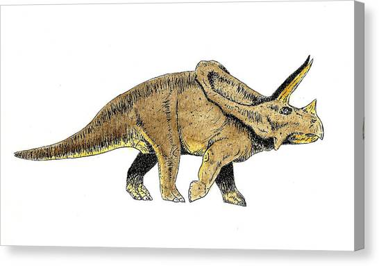 Triceratops Canvas Print - Triceratops by Michael Vigliotti