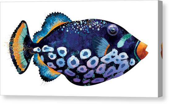 Shrimping Canvas Print - Trigger Fish by Trevor Irvin