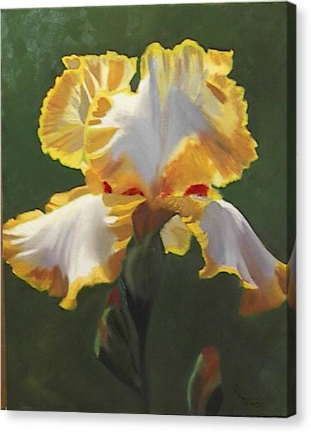 Trimmed In Yellow 1 Canvas Print by Robert Tower
