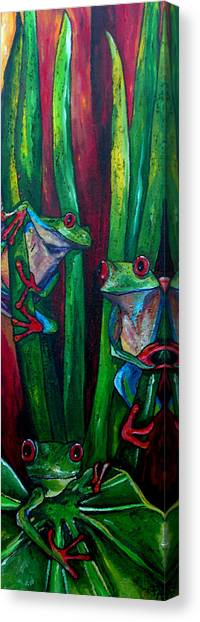 Trinity Of Tree Frogs Canvas Print by Patti Schermerhorn