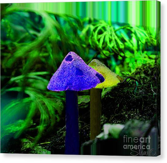 Trippy Shroom Canvas Print