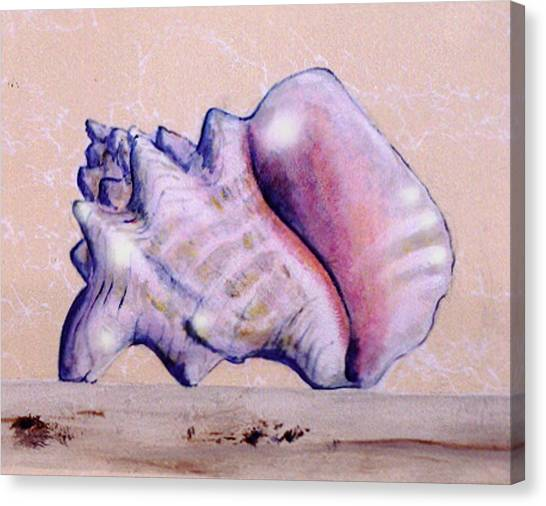 Canvas Print featuring the painting Trompe L'oeil Conch Shell by Thomas Lupari