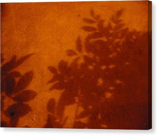 Tropic Sands Canvas Print by Stephen Davis
