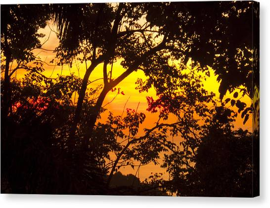 Palm Trees Sunsets Canvas Print - Tropical 10 by Mark Ashkenazi