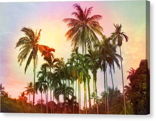 Palm Trees Sunsets Canvas Print - Tropical 11 by Mark Ashkenazi