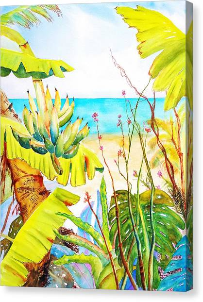 Banana Tree Canvas Print - Tropical Beach Garden by Carlin Blahnik CarlinArtWatercolor