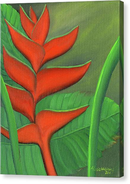 Tropical Beauty - Red And Green Heliconia Canvas Print by Maria Williams