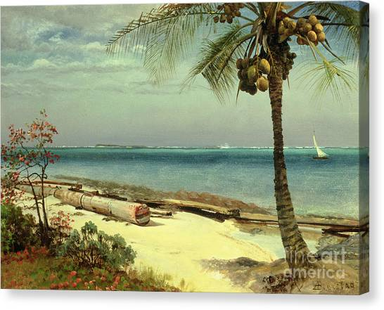 Indians Canvas Print - Tropical Coast by Albert Bierstadt