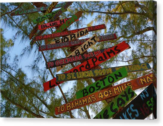 Tropical Directions Canvas Print