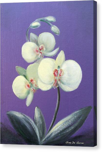 Tropical Elegance Canvas Print