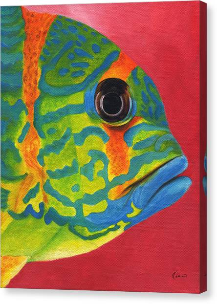 Amazon River Canvas Print - Tropical Fish by Kathleen Wong