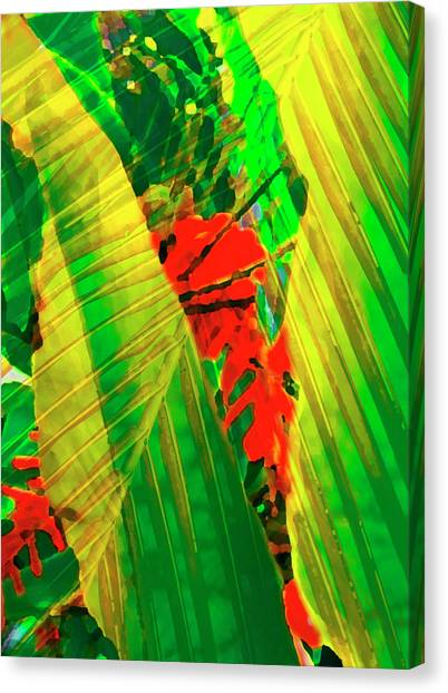 Tropical Fusion Canvas Print