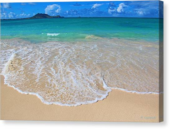 Tropical Hawaiian Shore Canvas Print