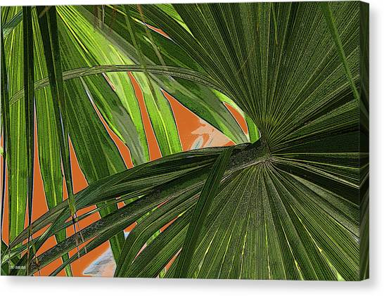 Tropical Palms 2 Canvas Print by Frank Mari