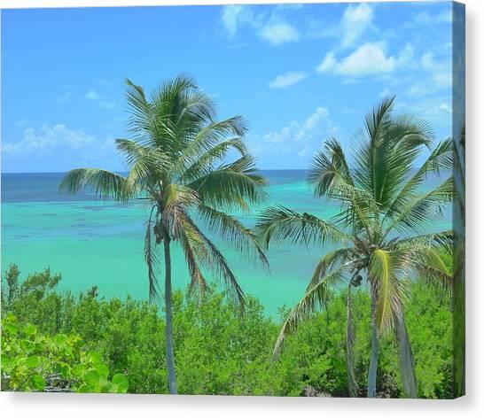 Tropical Splendor Canvas Print