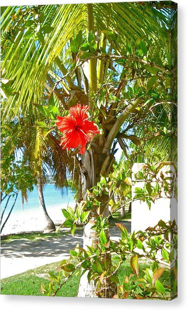 Tropical Spring Flower Canvas Print