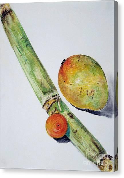 Tropical Trio Canvas Print