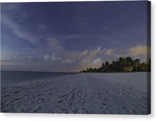 Tropical Winter Canvas Print